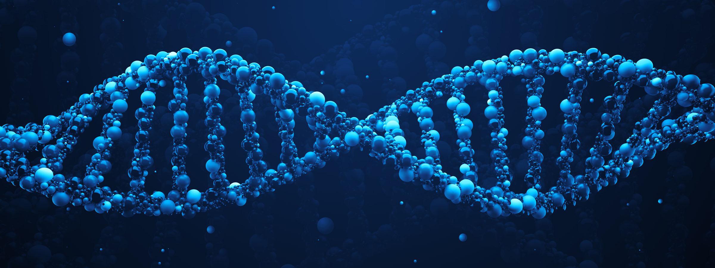 Computer rendering of a gene.